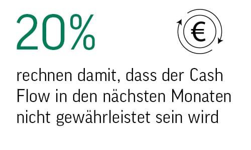 Statistik Cash Flow