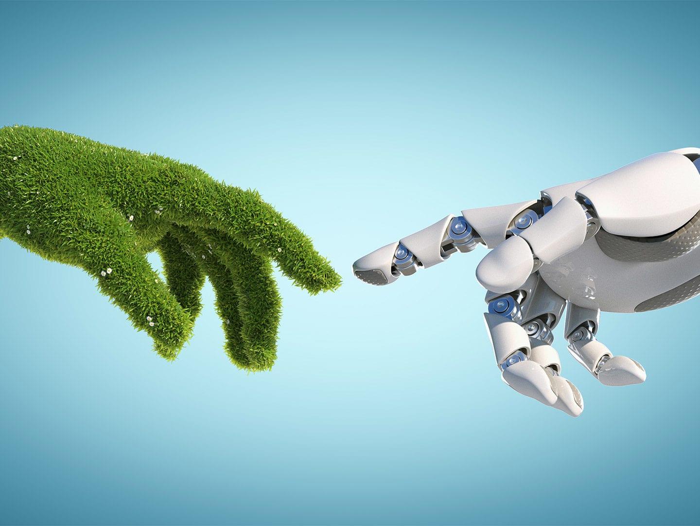 Zwei Hände die sich berühre. Ein Symbol für Nachhaltigkeit