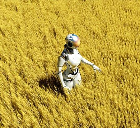Roboter auf Kornfeld