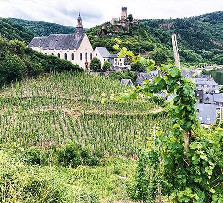 Ein Panorama von den Weinbergen in Beilstein