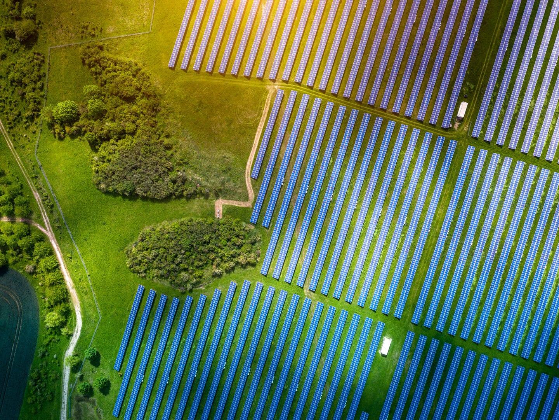 Wie Unternehmen nachhaltiger werden
