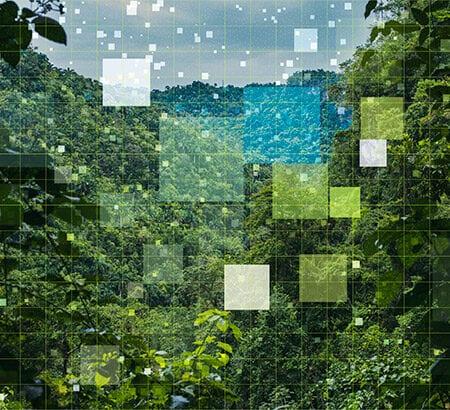 grüner Dschungel mit quadratischem Raster Overlay