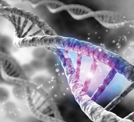 Eine DNA-Doppelhelix