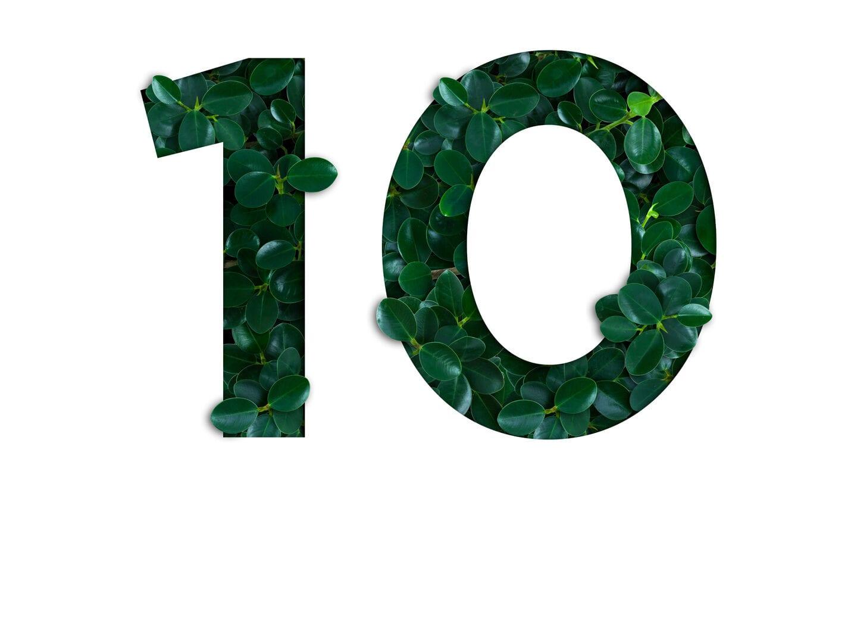 Die Zahl 10 im Stil von Pflanzen