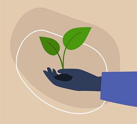 Illustration einer Hand mit einer Pflanze